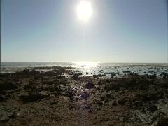Ocean Rocks Sunflare 1 Stock Footage