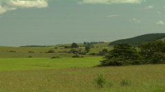 Rural Scene - stock footage