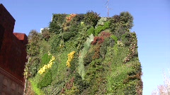 Vertical Garden 04 Arkistovideo