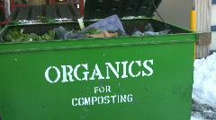 Pigeons feeding in 'ORGANICS' bin. Stock Footage