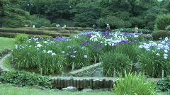 Tokyo Imperial Garden 4 Stock Footage