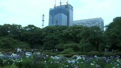 Tokyo Imperial Garden 5 Stock Footage