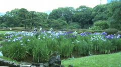 Tokyo Imperial Garden 6 Stock Footage