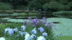 Tokyo Imperial Garden 8 Stock Footage