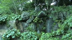 Tokyo Imperial Garden 16 Stock Footage