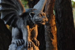 Gargoyle Time Lapse zoom Stock Footage