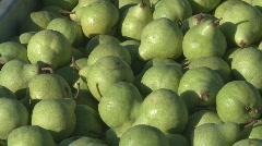Bin of freshly picked green pears  Stock Footage