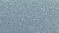 Downpour rain storm - stock footage