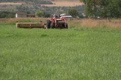 Farm Life 07 Stock Footage
