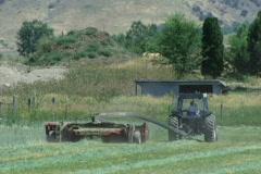 Farm Life 02 Stock Footage