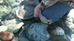 Gold prospector, miner Stock Footage