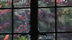 Autumn Casement Window.mp4 Stock Footage