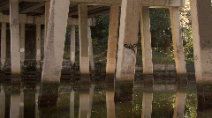 Bridge Over Hillsborough River Stock Footage