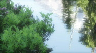 Reflection HD Stock Footage