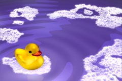 Rubber Duckie Stock Footage