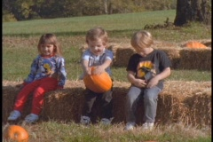 Children sit on hay bales in a pumpkin patch. Stock Footage