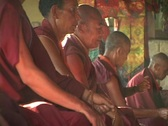 Buddhist monks pray together. Stock Footage