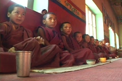 Buddhist boys at a monastery sit in a long row. Stock Footage