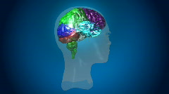 Aniamted high Defintion 3d Human Brain - stock footage