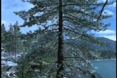 A mansion hides in the forest beside Lake Tahoe. Stock Footage
