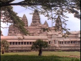 Stock Video Footage of Branches hang over the Angkor Wat temple in Cambodia.