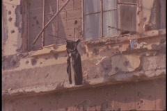 Olin pommien rakennukset seisovat Beirut, Libanon. Arkistovideo