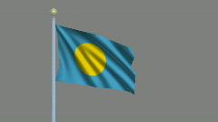 Flag of Palau Stock Footage