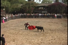 A bullfighter taunts a bull with a red cape. - stock footage