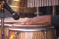 A man's hands play a set of bongo drums. Stock Footage