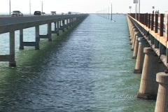 Traffic travels on the bridges or skyway in the Florida Keys Stock Footage