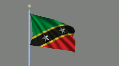 Flag of Saint Kitts and Nevis Stock Footage