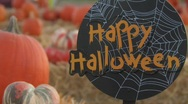 Stock Video Footage of Pumpkin Corral Halloween