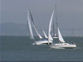 Stock Video Footage of Sailboats on the bay 4