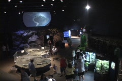 Visitors look at exhibits in a museum. Stock Footage
