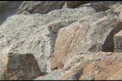 Zoom-out from shoreline stones to the Plymouth Rock Memorial. Stock Footage