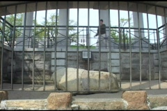 Medium-shot of a tourist overlooking Plymouth Rock. Stock Footage