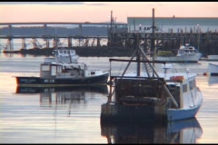 Medium shot of  fishing boats moored  in a harbor in Maine. Stock Footage
