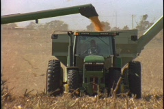 Harvested corn falls into the back of the combine as it moves through the corn - stock footage