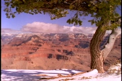 Fresh snow blankets the rim of the Grand Canyon. Stock Footage