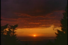 Trees frame an orange sky in the Pacific Northwest. Stock Footage