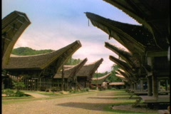 The longhouses in Sulawesi, Indonesia look likes ships. Stock Footage