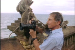 A monkey sits on a photographer at a Balinese temple. Stock Footage