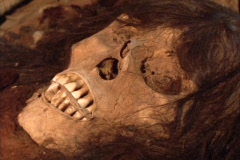 Close-up of a skull in an ancient Inca tomb in Peru. Stock Footage