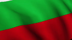 Hungarian Flag Stock Footage