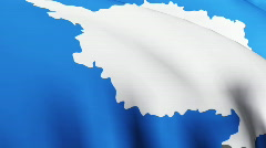 Antarctic flag 3D Stock Footage