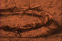 Dust blows beneath a crown of thorns. Stock Footage