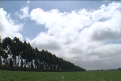 Clouds pass over a field and some trees in England. Stock Footage