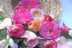 Beautiful flowers sit in a vase. Stock Footage
