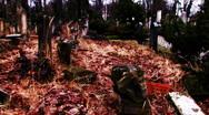 Jewish cemetery world war II Stock Footage