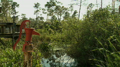 Old pump in the swamp Stock Footage